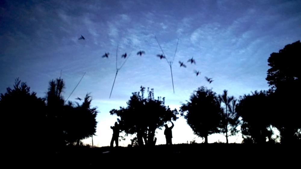 坂網鴨猟の網の投げ方